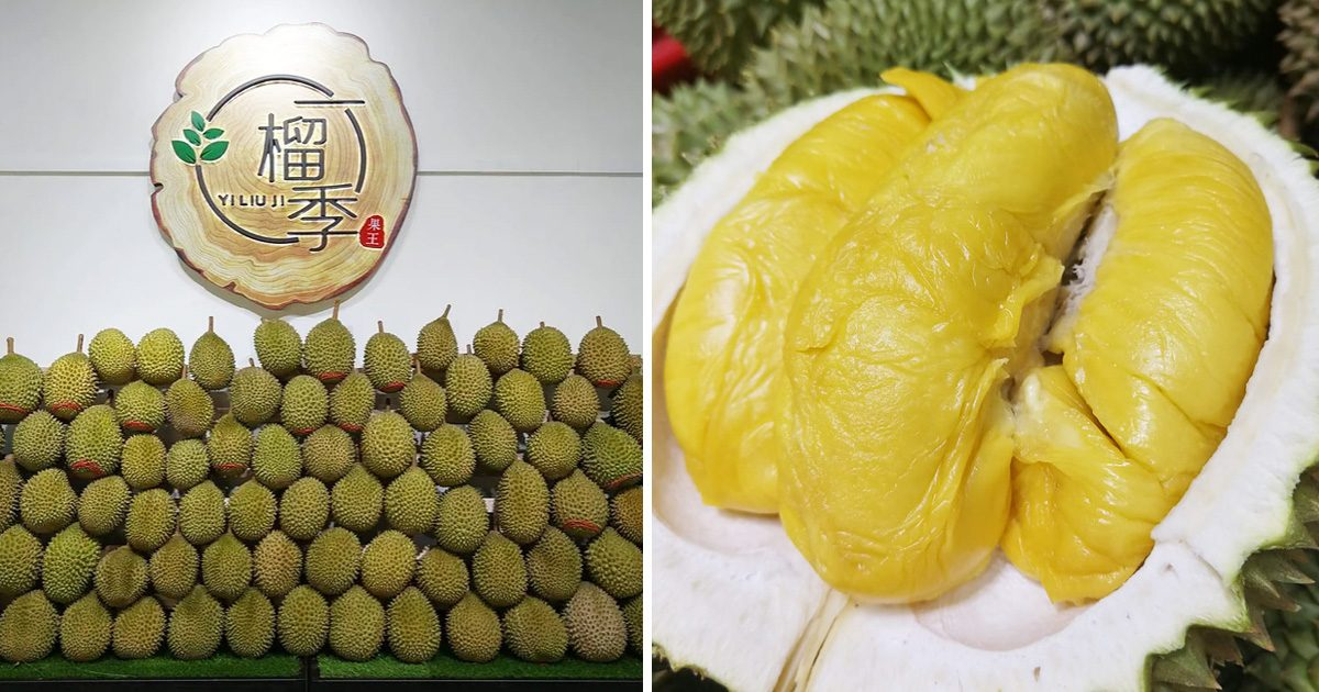 CCK Durian Stall giving away free XO durians to Singaporeans aged 60 and above tomorrow