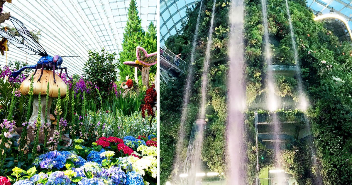 Gardens by the Bay Celebrates National Day with 6 months unlimited pass to Cloud Forest & Flower Dome from S$12